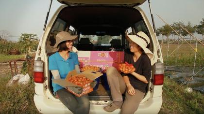 兩個女生投筆從農 種出美濃番茄生命力